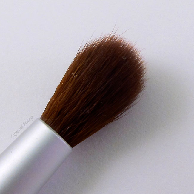ecoTools highlight brush