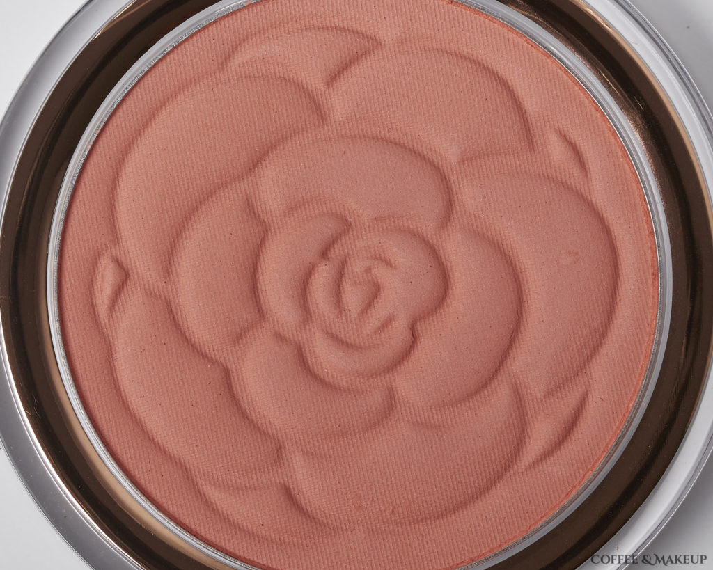 Peach Primrose | Flower Beauty Flower Pots Blush