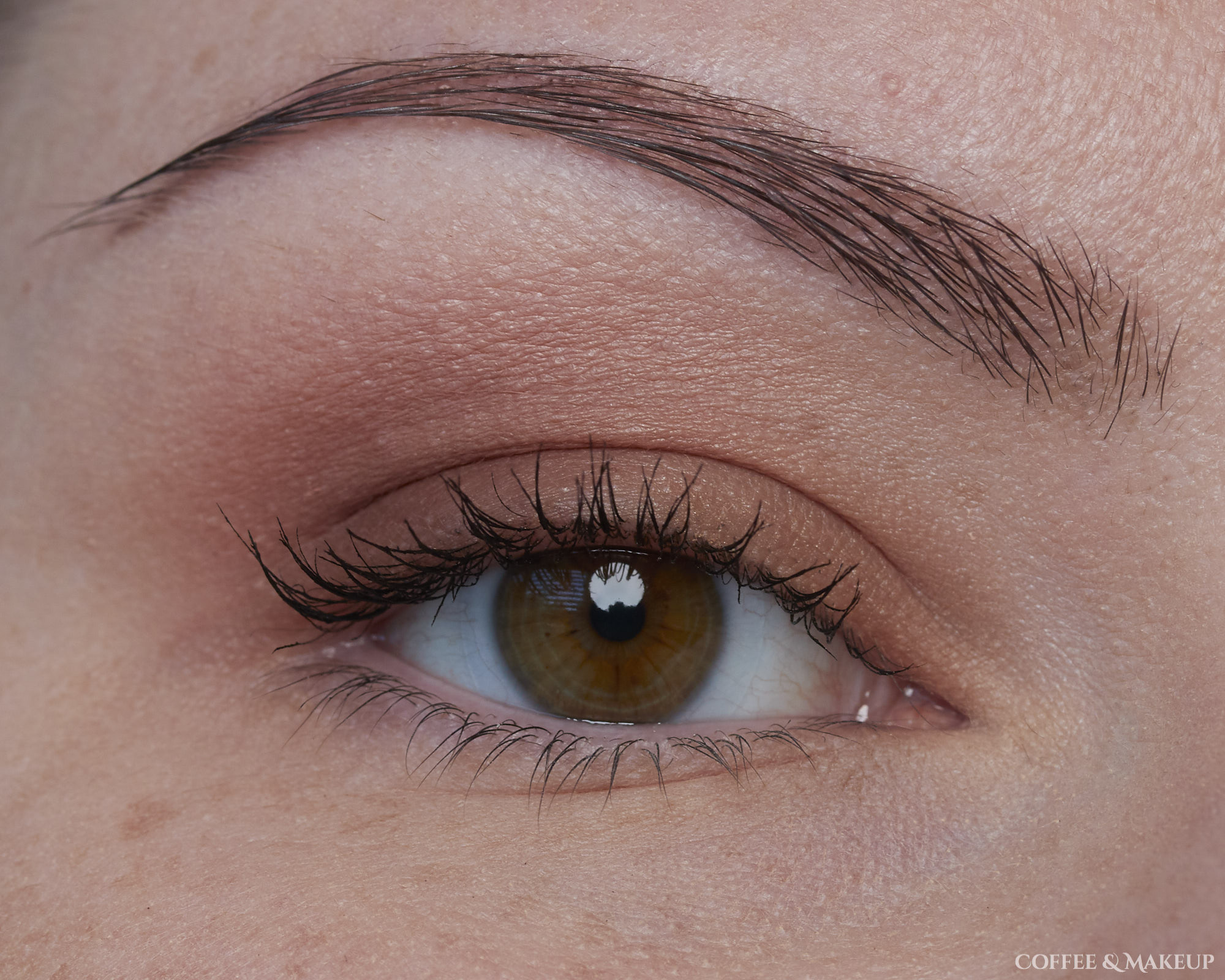 Maybelline Matte About Town City Mini Palette Look