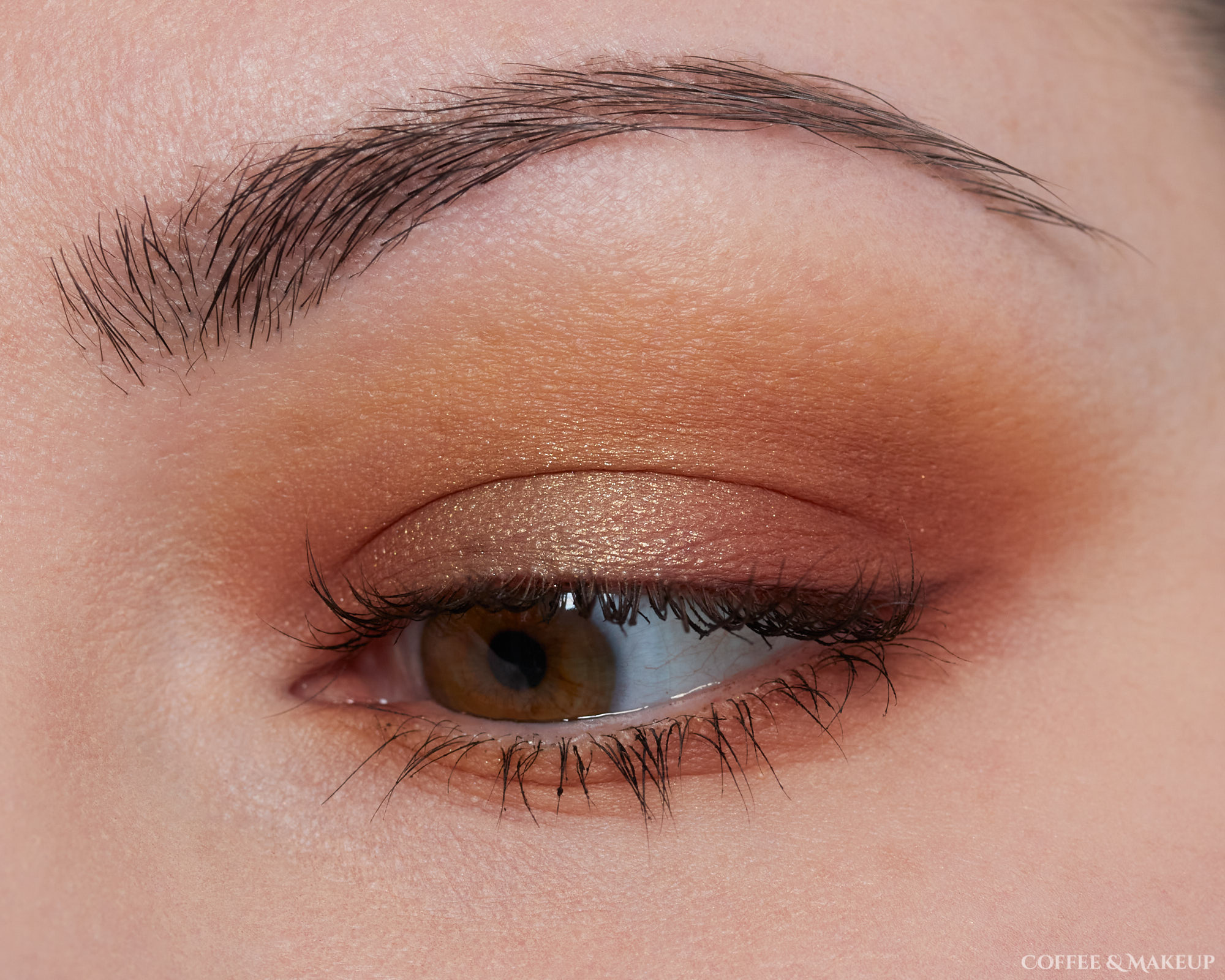 Too Faced Pumpkin Spice Palette Look #2
